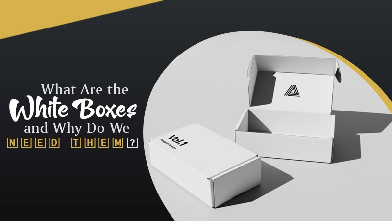 What Are the White Boxes and Why Do We Need Them