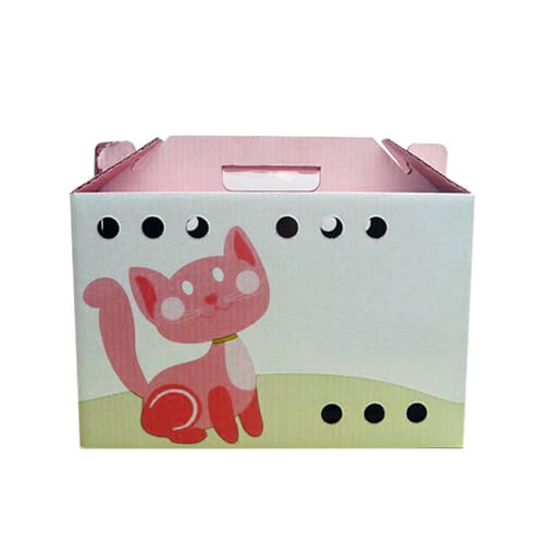 custom-presentation-box